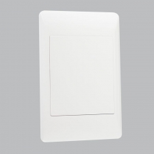 BLANK PLATE 2 X 4 (20 per box)