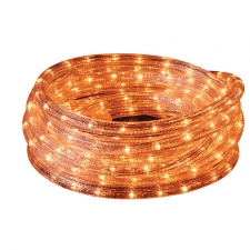 LED ROPE 10m CLEAR WW  8 FUNCT CONTROL