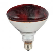 PAR38 Infrared Brooder Lamp 175W